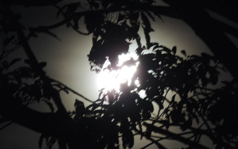 Luar do Sertão