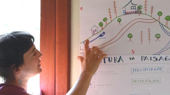 Curso de Design em Permacultura - PDC