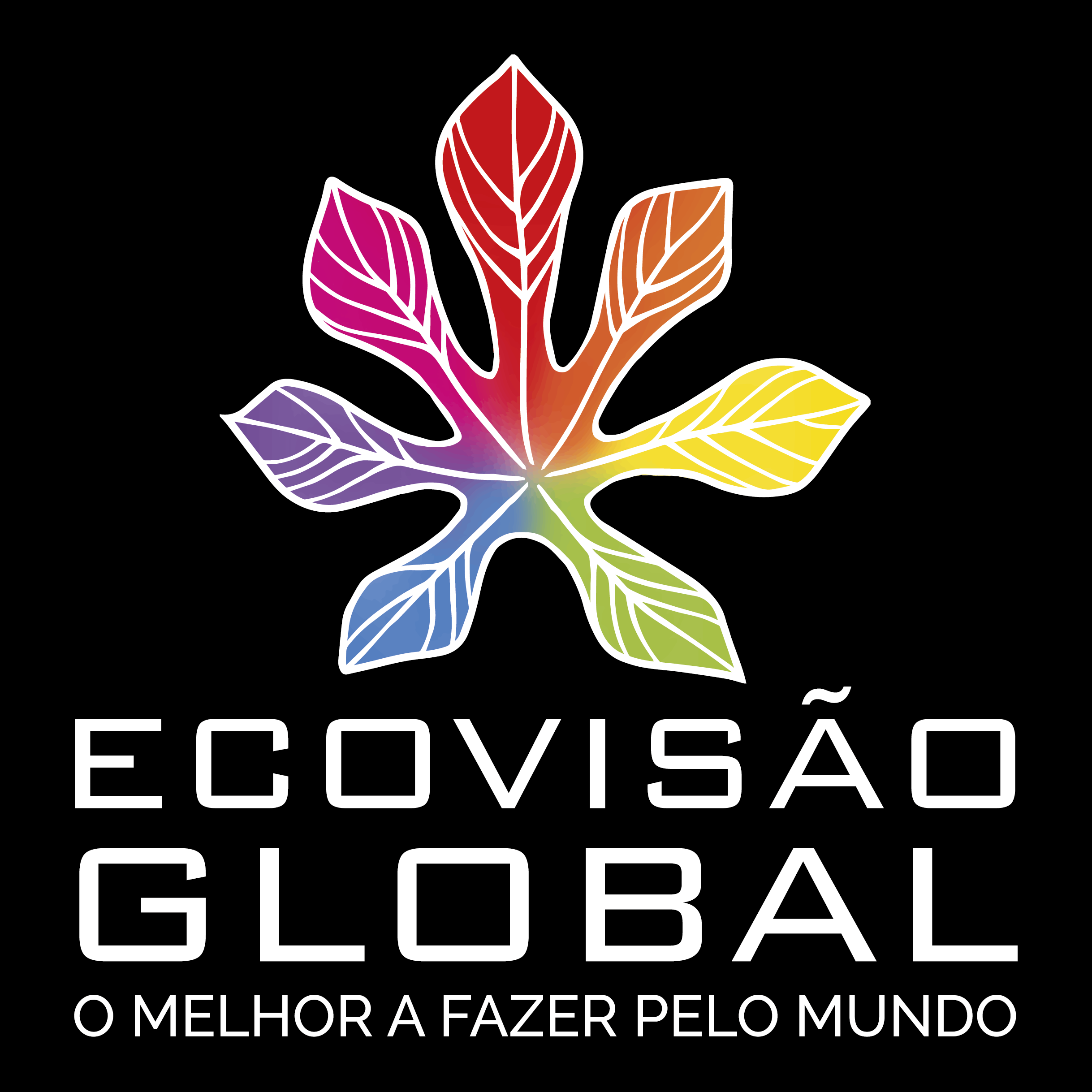 Katya Francisco Logo EcoVisão Global